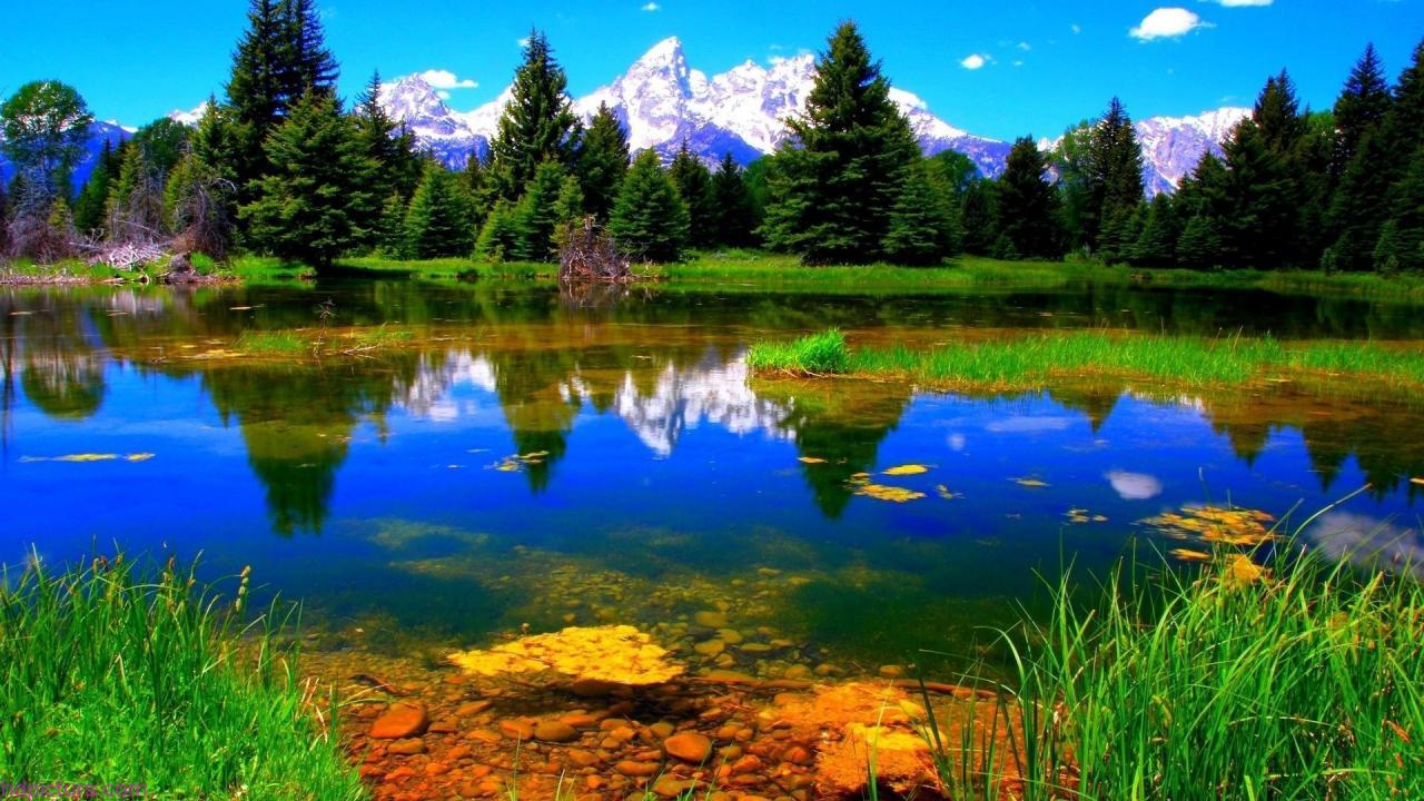 صورة صور طبيعه , صور تريح قلب الانسان 51 9