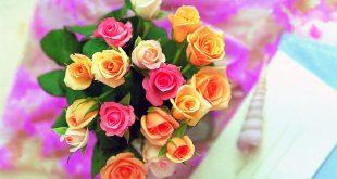 صورة صور ورد ملونة , تشكيلة صور زهور في منتها الجمال