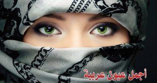 صور صور اجمل عيون عربيه , اجمل عيون سحره في الكون