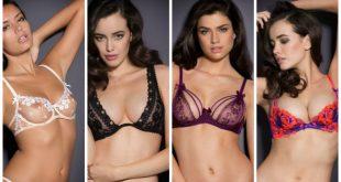 صورة انواع الثدي عند النساء بالصور , تعرف على معلومات عن انواع الثدي عند المراة