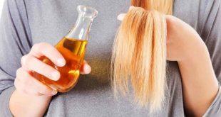 صورة خلطات للشعر الجاف , تعرفي علي افضل الماسكات لعلاج شعرك