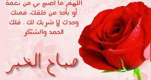 صورة رسالة حب صباحية، صباح الارواح الصافيه