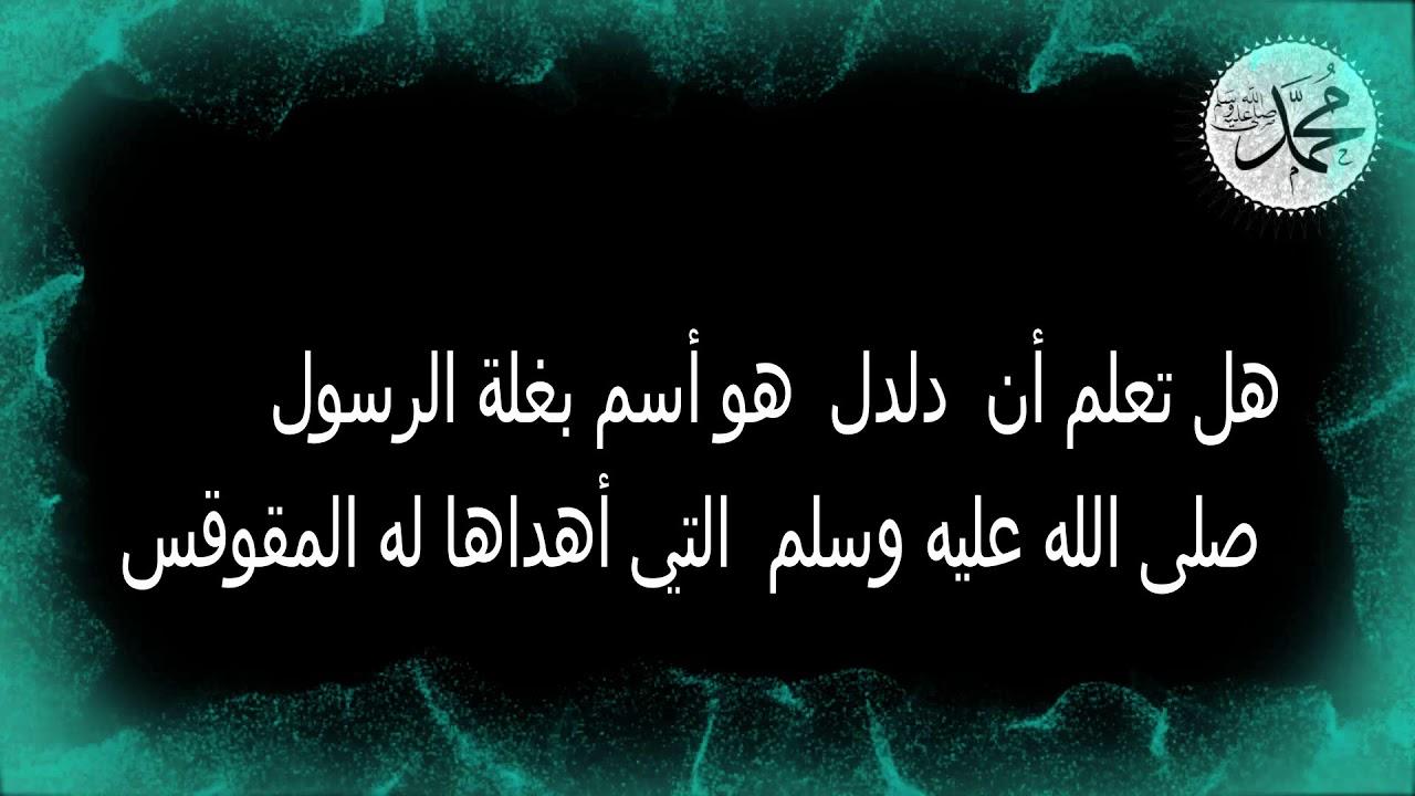 صورة معلومات عن رسولنا الكريم ،هل تعلم عن الرسول 125 1
