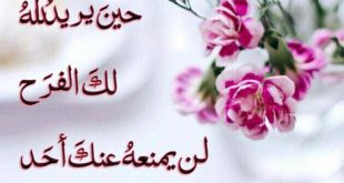 صورة اسعد من تحب ب مساء الخير،كلمات مساء الخير